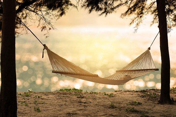 do hammock straps hurt trees